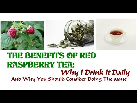 Red Raspberry Leaf Tea: This Is Why I Drink A Cup Daily