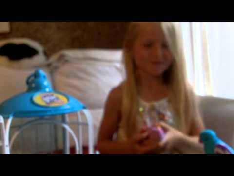 Toys: Little Live Pets