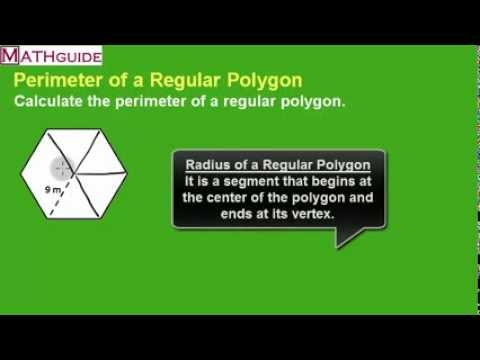 Perimeter of a Regular Hexagon: Problem of the Day