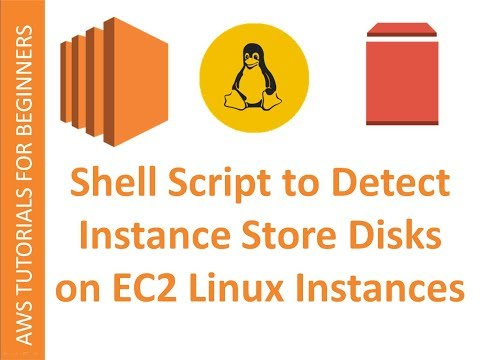 AWS Cloud | Instance Store | Shell Script to Detect Ephemeral Disks