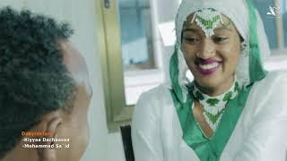 Redwan Aman -Maashoo Koo- New Ehiopian Oromo Music 2020 (Official Video)