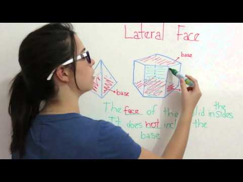 Shapes in Space | Lateral Face