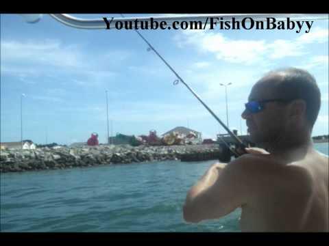 Spanish Mackerel Live Bait Fishing