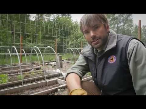 How To Install an Electric Fence to Prevent Bear Conflicts