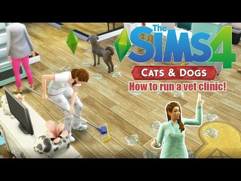 HOW TO START AND RUN A VET CLINIC! | The Sims 4 Cats and Dogs | TIps & Tricks