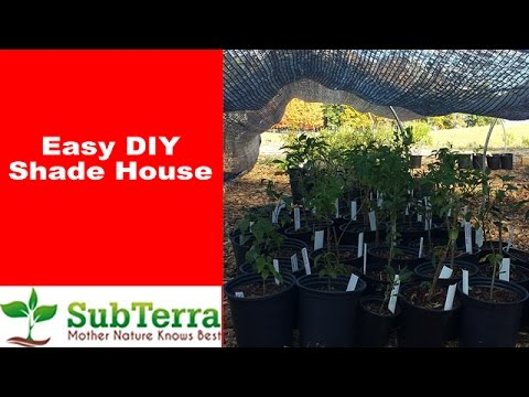 Quick, Easy and Inexpensive DIY Shade House for Plants