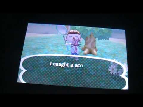 Animal Crossing New Leaf - Catching a Scorpion