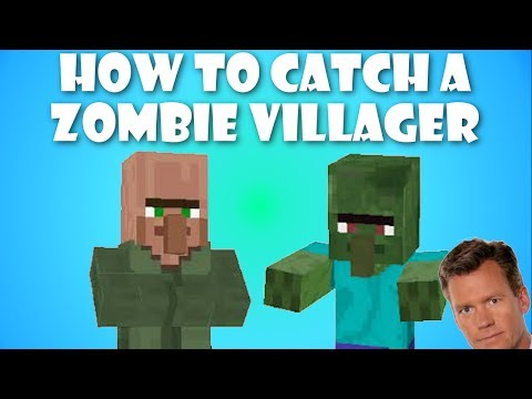 Minecraft - Easy Way to Catch a Zombie Villager (Tutorial)