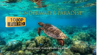 Sleep Music in Underwater Paradise❤Immerse yourself in the underwater dimension🤷♂️#Playlist