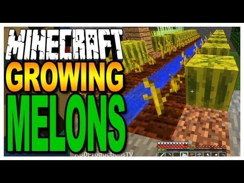 Minecraft -Growing Melons & Finding Seeds