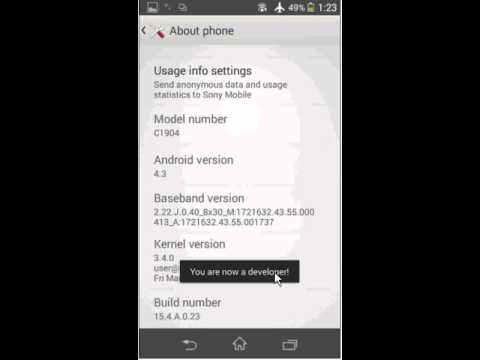 How to access the Developer Options within the Settings of your Android 4.3 and up device