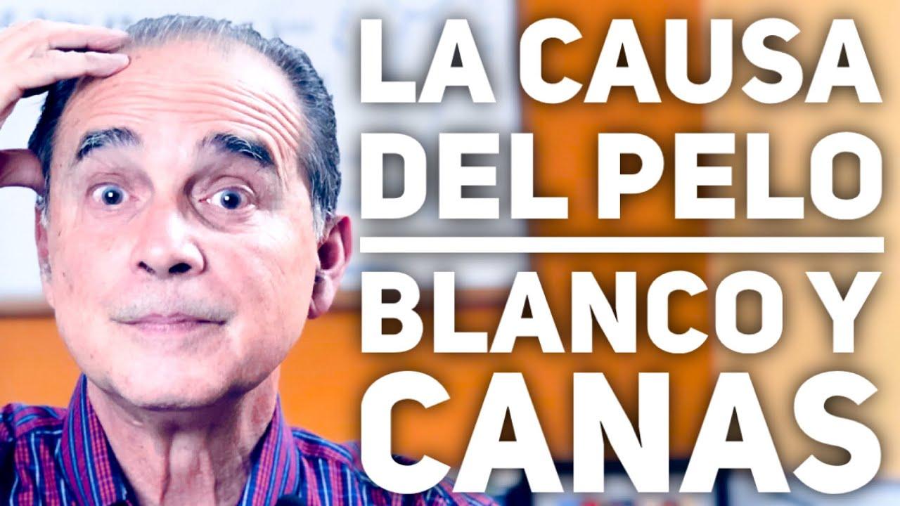 Episodio #1862 La Causa Del Pelo Blanco Y Canas