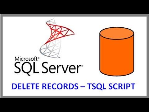 SQL Server -- DELETE RECORDS FROM TABLE VIA TSQL SCRIPT