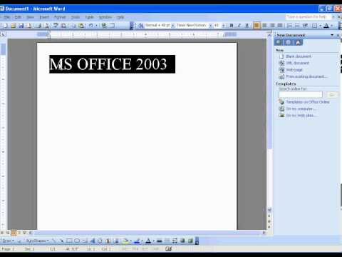14 MS Office Word 2003 Formatting  to Bold