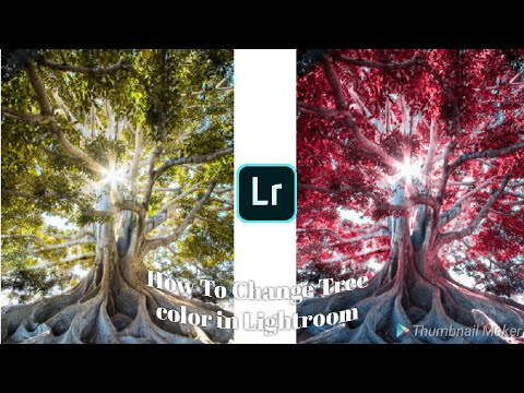 How to Change Tree Color On Mobile In Lightroom || Change the Colour of Leave In Lightroom ||MTvMaza