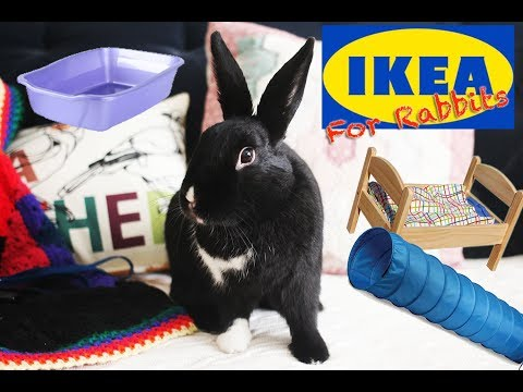 Things You Can Buy at IKEA for Rabbits!