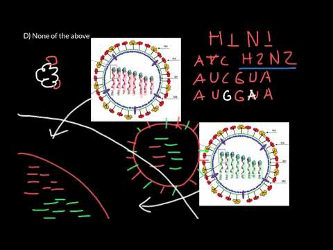 What is antigenic shift and drift