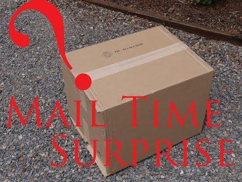 Mail time surprise - KLR Build update