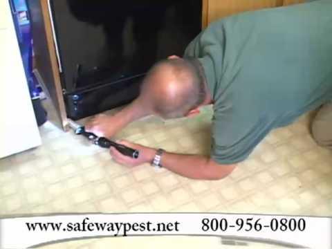 Safeway Pest Management Commercial