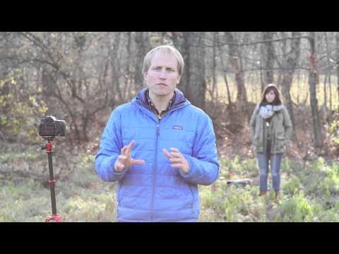 Aperture & Bokeh - Kit Lens vs a Prime Lens
