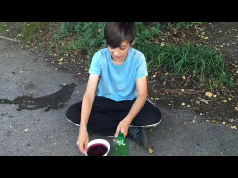 How to make berry juice