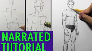 How To Draw Male Body Proportions Narrated Tutorial