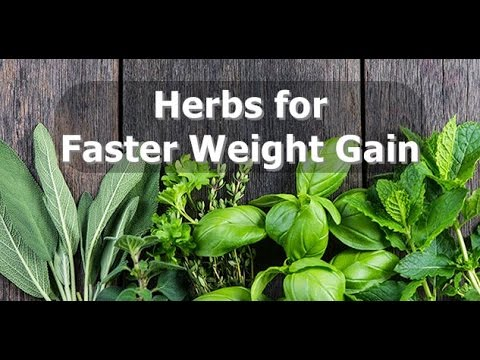 Herbs for Faster Weight Gain