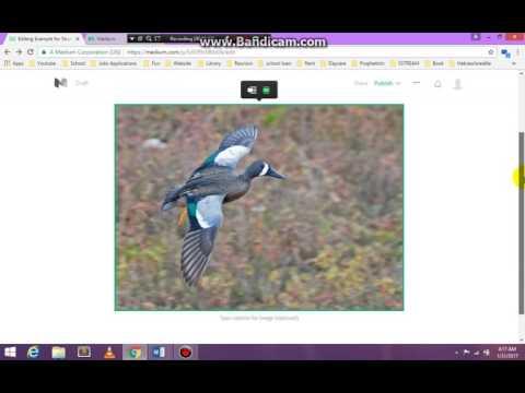 Blogging - medium.com