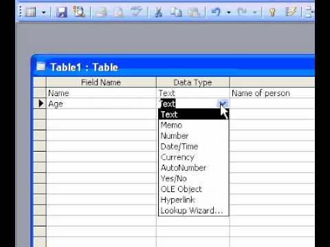 Microsoft Office Access 2003 Create a table in Design view