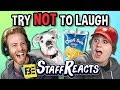 Try To Watch This Without Laughing Or Grinning Battle 9 (Ft. Fbe Staff) mp3