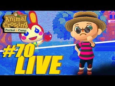 Rise and Shine Campers!! Animal Crossing: Pocket Camp Live Stream