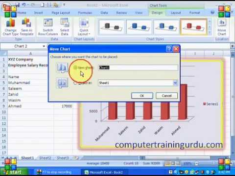 How to Insert Chart in MS Excel 2007 Tutorial in Hindi
