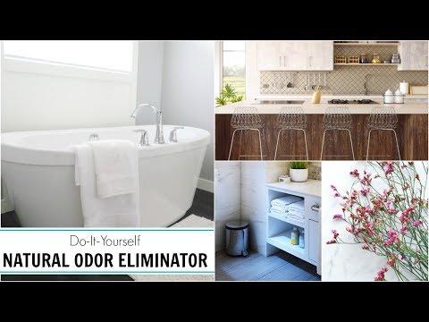 Quick Tip   Easy + Cheap Natural Home Odor Eliminator