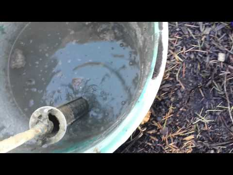Septic backup due to clogged filter