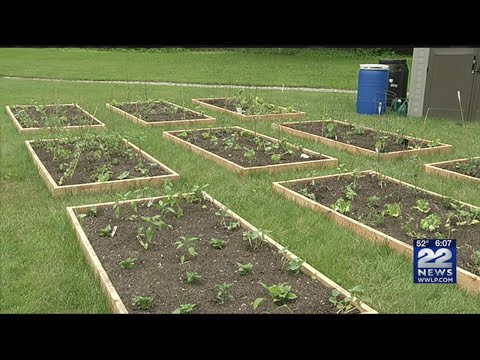 New community opens garden in East Longmeadow