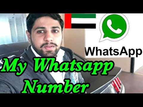 My WhatsApp Number Exposed - Contact me On WhatsApp