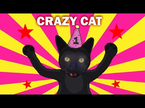 Crazy Cat Birthday Video 1 year old kitten jumping playing climbing tree toy