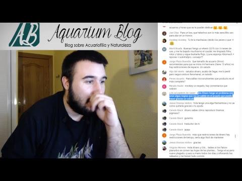 AQUARIUM BLOG AL APARATO! Tu preguntas y yo respondo! 12/3/2018