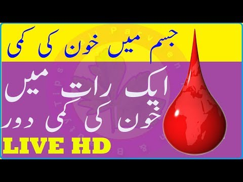 Body Blood Increase Food - Top Foods to Increase Hemo Blood Levels Fast Naturally - Increase  Blood