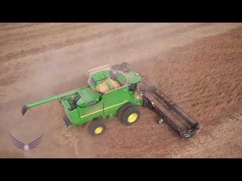 1900 Acre Field of Kentucky Soybeans