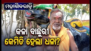 Sevak Shares The Story Behind Dhabaleswar Baba - OTV Exclusive