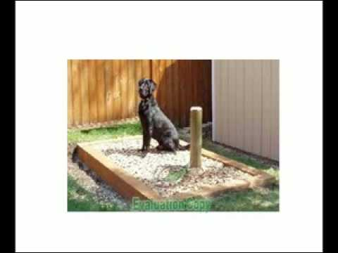 SnoutHouse! The Solution to your Dog Poop problem!