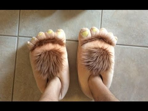 Click to see what these furry feet can do