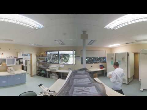360 Video inside the laboratory 1