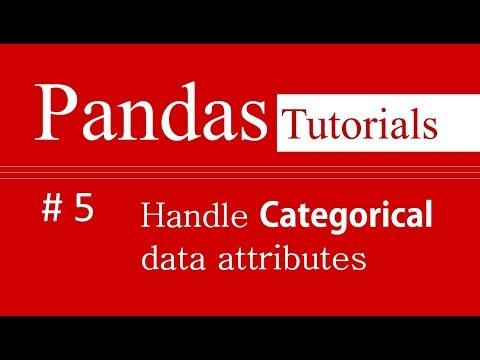Pandas Tutorials # 5 : How to handle Categorical data attributes in Pandas
