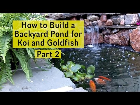How to Build a Backyard Pond for Koi and Goldfish Part 2 - Pond Liner and Filter