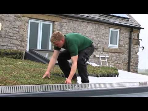 How to Install GrufeKit Sedum Green Roofs - It's Easy!