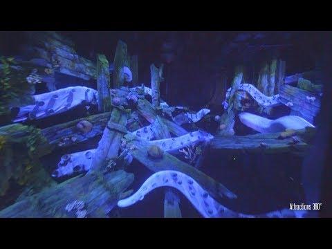 [4K] Tokyo Disney Submarine Ride - 20,000 Leagues Under the Sea Ride - Tokyo DisneySea