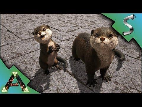 OTTER TAMING! WHERE TO FIND OTTERS ON RAGNAROK! OTTER BREEDING! - Ark: RAGNAROK [DLC Gameplay E53]