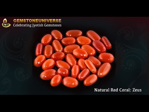 Japanese Red Coral Natural and Untreated